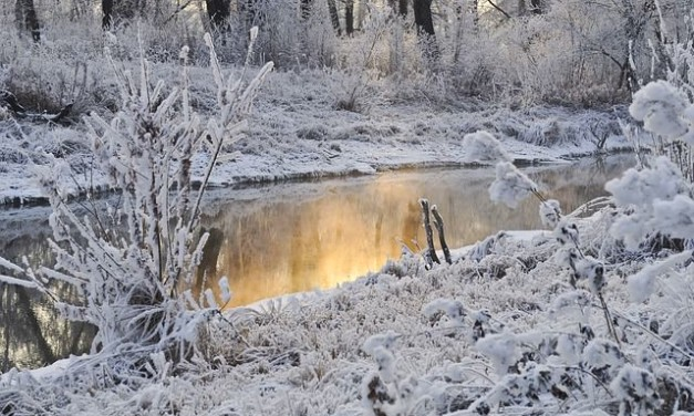 10 Coldest Places in the World
